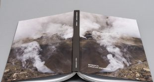 Burning for Art - Barbiekuh Book de Christian Eisenberger